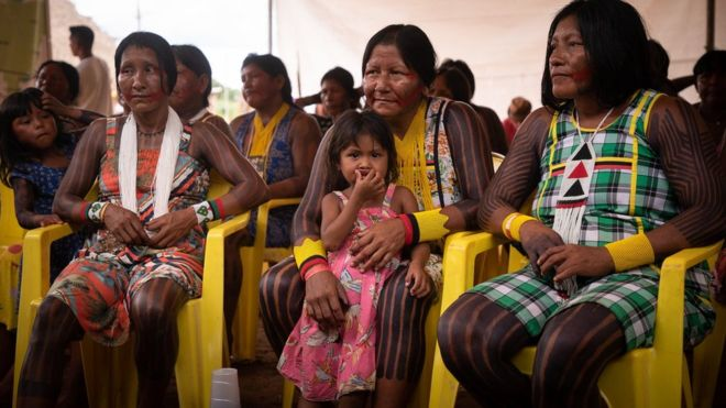 Coronavirus 'could wipe out Brazil's indigenous people'
