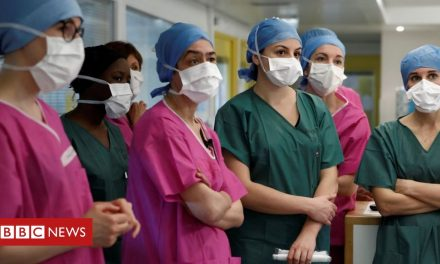 Coronavirus: France records highest daily death toll of 833