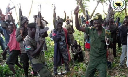 nas fights back SPLM IO FORCES IN YEI RIVER AREA