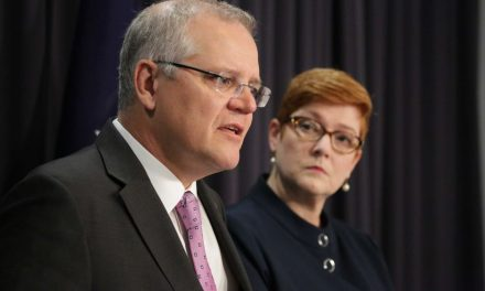 Coalition of 116 countries back Australia's push for independent coronavirus inquiry
