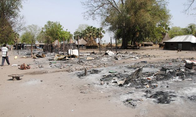 udrm/a: Murle attack on Lou Nuer an assault on humanity