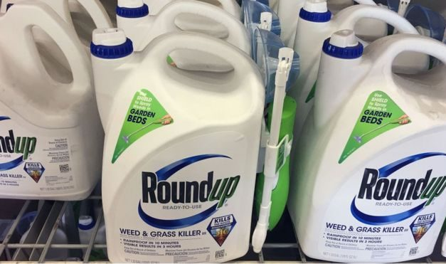 Bayer to pay $10.9bn to settle weedkiller cancer claims