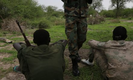 Boma Youth accuse Lou Nuer and bor dinka of mobilising to attack murle