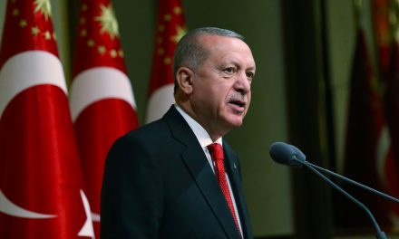 Turkey's Erdogan says Egypt's actions in Libya are 'illegal'