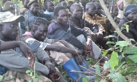FRESH CLASHES BETWEEN NAS AND THE SSPDF in equatoria