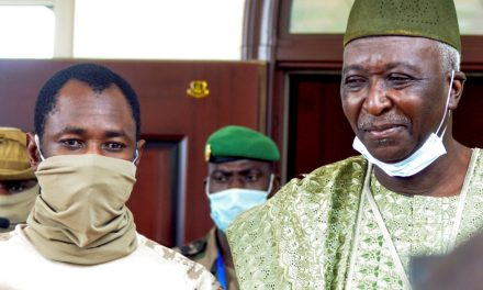 Mali's designated interim president makes first appearance